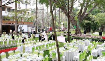 Cho thuê bàn ghế đãi tiệc màu xanh lá mạ