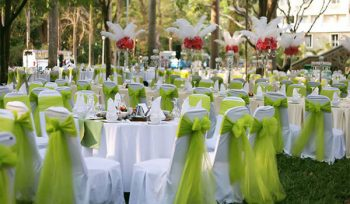 cho thuê bàn ghế tiệc màu xanh cốm